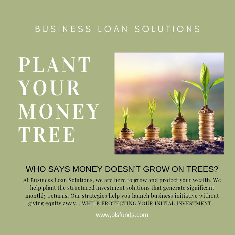 Plant your money tree